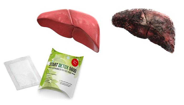 Start Detox 5600 przeciwko toksyn: za 28 dni pozbędziesz się toksyn z organizmu