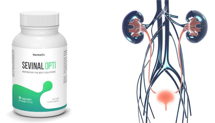 Sevinal Opti: innowacyjna receptura w walce z nietrzymaniem moczu