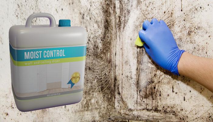 Moist Control: pozbędziesz się wilgoci z domu lub mieszkania w 14 dni