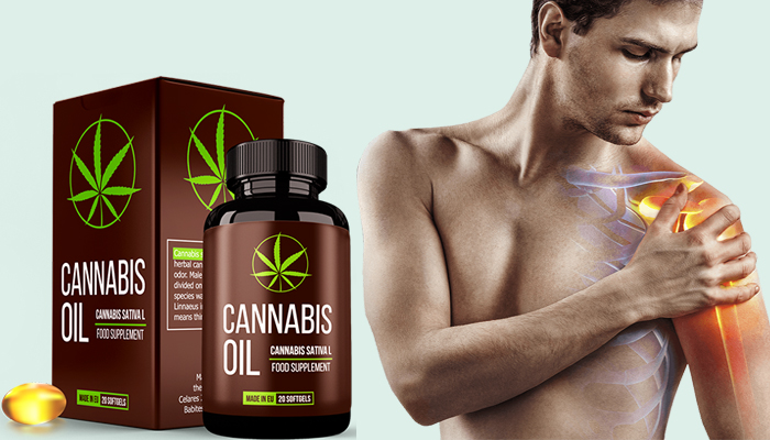 Cannabis Oil: regeneruje chrząstki i stawy