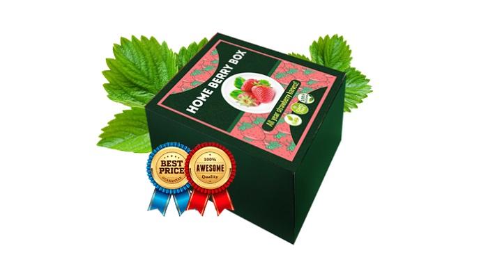Home Berry Box domowe truskawki: niezwykła odmiana dużych i smacznych truskawek  JUŻ PO 1 MIESIĄCU!