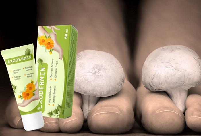 Exodermin na grzybicę stóp i paznokci: niszczycielska siła natury przeciwko grzybicy skóry!