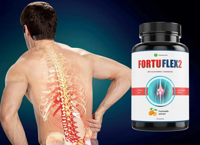 FortuFlex2 dla stawów: regeneruje chrząstkę i tkankę kostną!